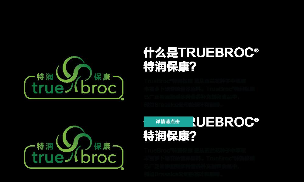 truebroc slide cinese